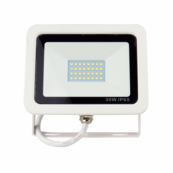 IP65 30W LED Floodlight for Outdoor Lighting with die-casting Aluminum Black or White Body