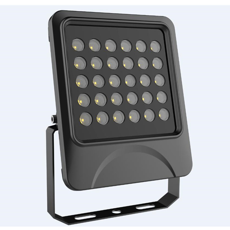 10/25/45 60deg or 90deg Black Case 30W LED Flood Lamp IP66 Outdoor die-casting Aluminum
